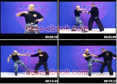 Wing Chun Kung Fu Ebook